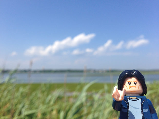 Lego Uncle Jim at the Marsh