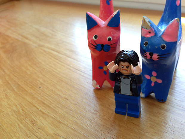 Lego Uncle Jim and the Swedish Cats