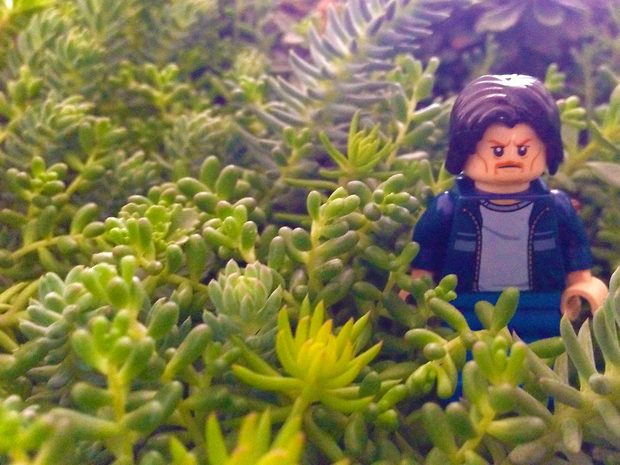 Lego Uncle Jim in the bushes